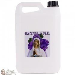 bottle water Banneux N.D - 5 L