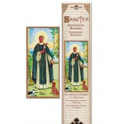 Pochette encens - Saint Martin - 15 pces