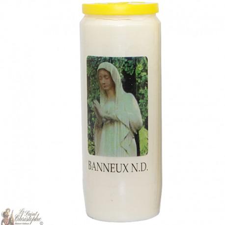 Bougies Neuvaines - Blanches à la Vierge de Banneux image verte prière - (Français)