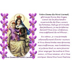 Autocollant bougie de neuvaine avec prière français - Notre Dame du Mont Carmel 1