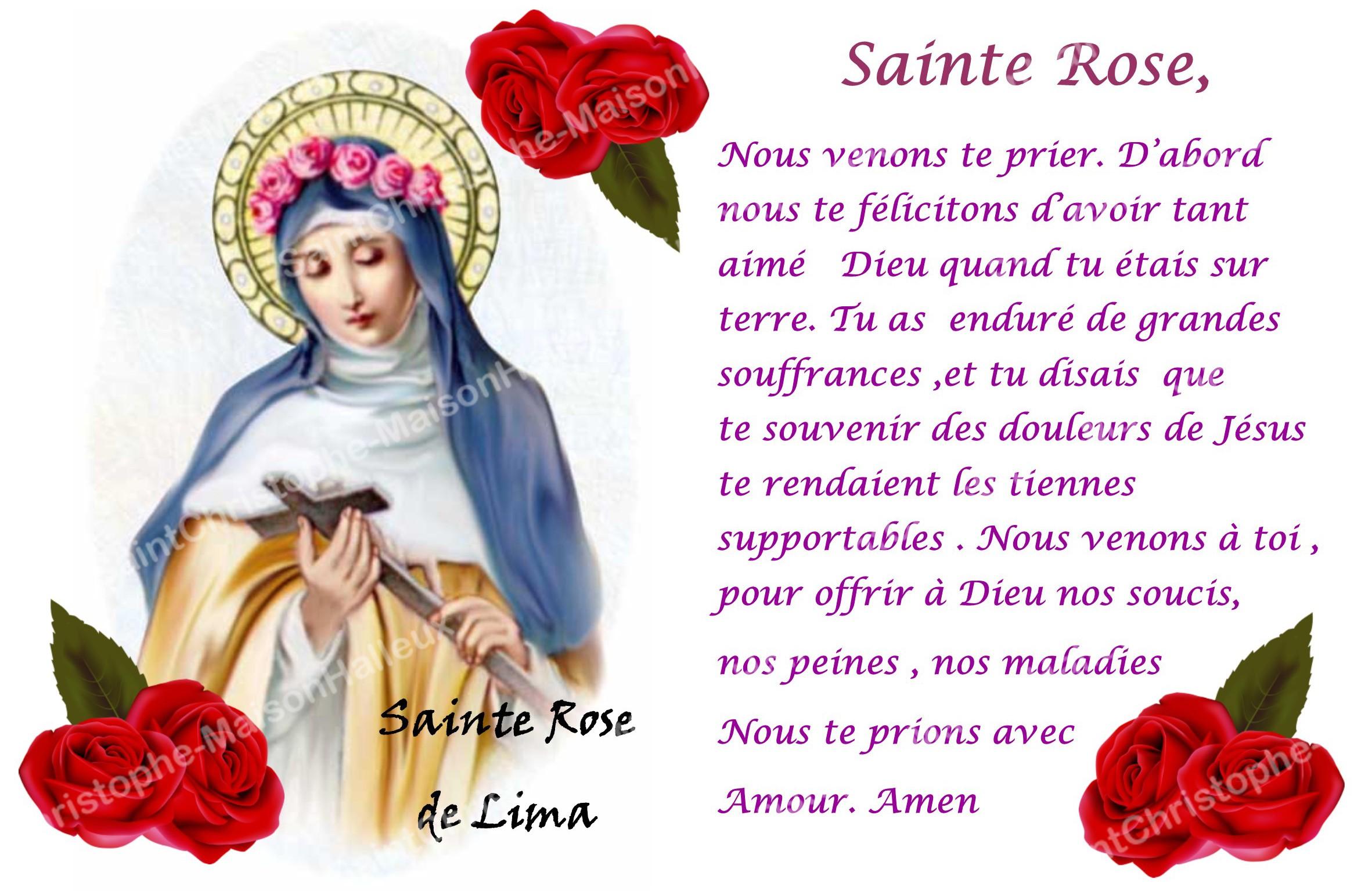 Autocollant bougie de neuvaine avec prière français - Sainte Rose de Lima -  Maison Halleux SPRL - Pour revendeurs