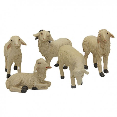 Sheep Christmas crib -  cm